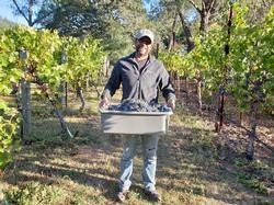 Winemaker Juan Orozco